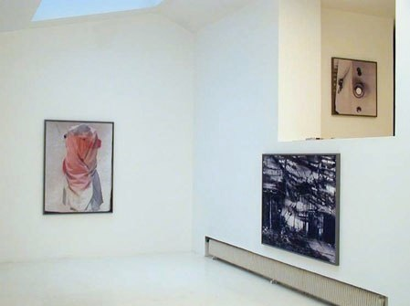 Vue de l'exposition à la galerie Aline Vidal, Paris 2005