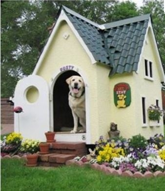 Peek Inside The Plush Pads Of The World's Most Privileged Pups➤ http://CARLAASTON.com/designed/dog-home-design