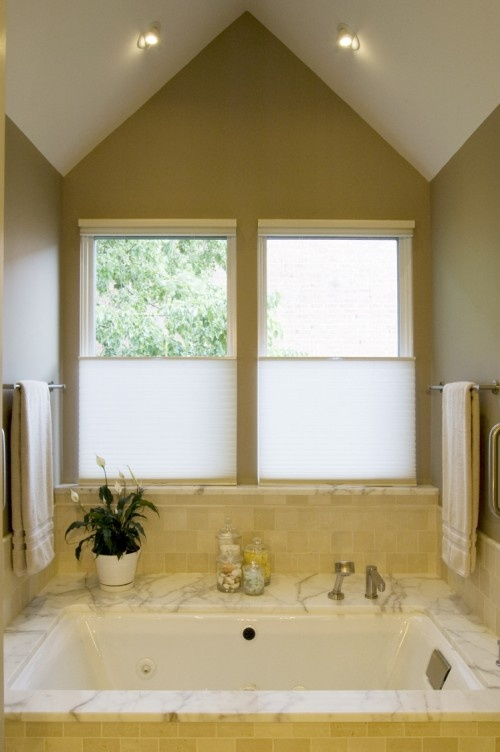 Bathroom Privacy Natural Light