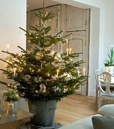 Christmas tree base; stand