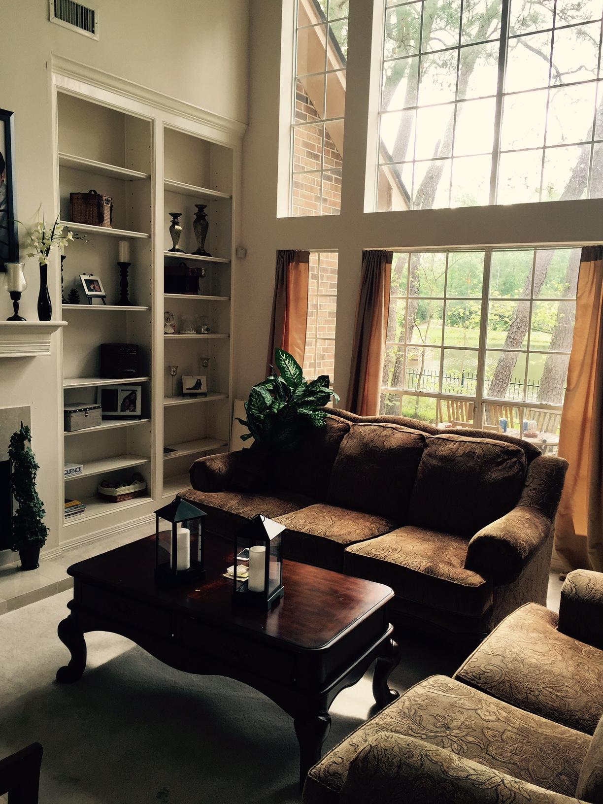 before | bookshelves & windows