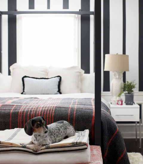 Bedroom; white bedding; lamp; dog | Image source: Country Living