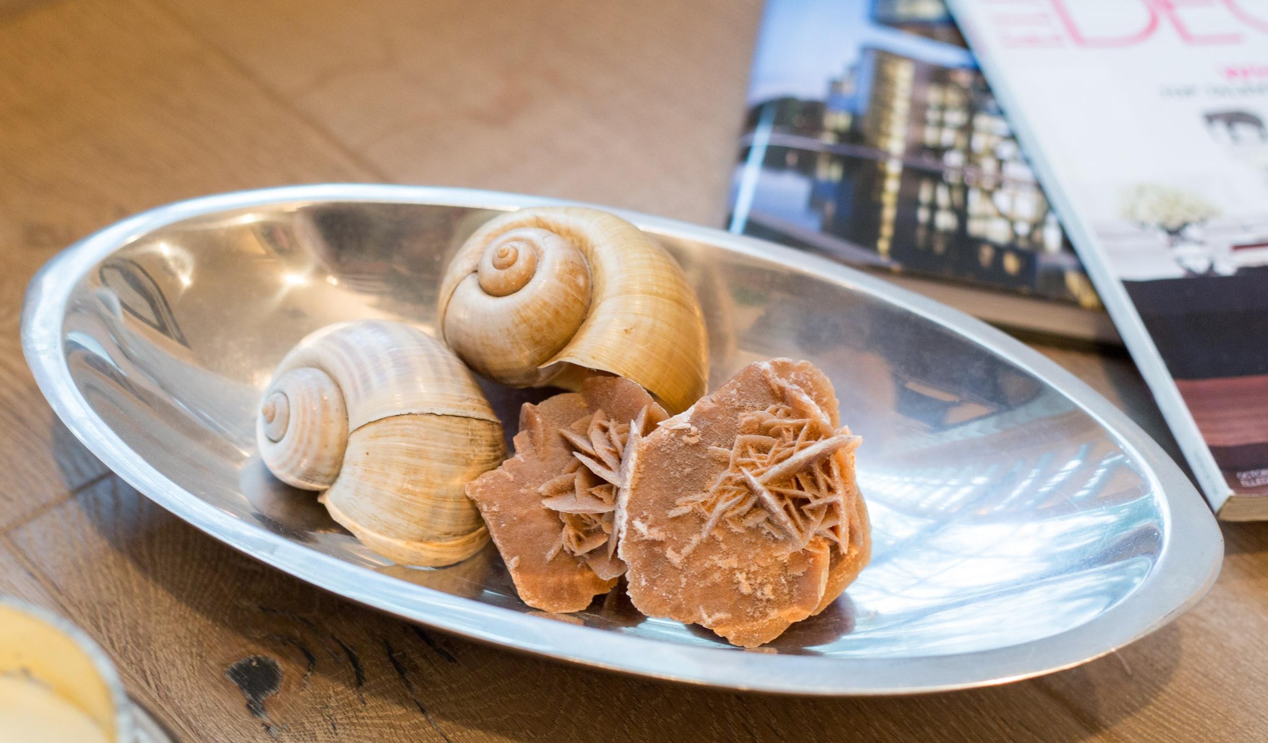 Shells displayed in a bowl, Bookshelf Styling   Tori Aston, photographer