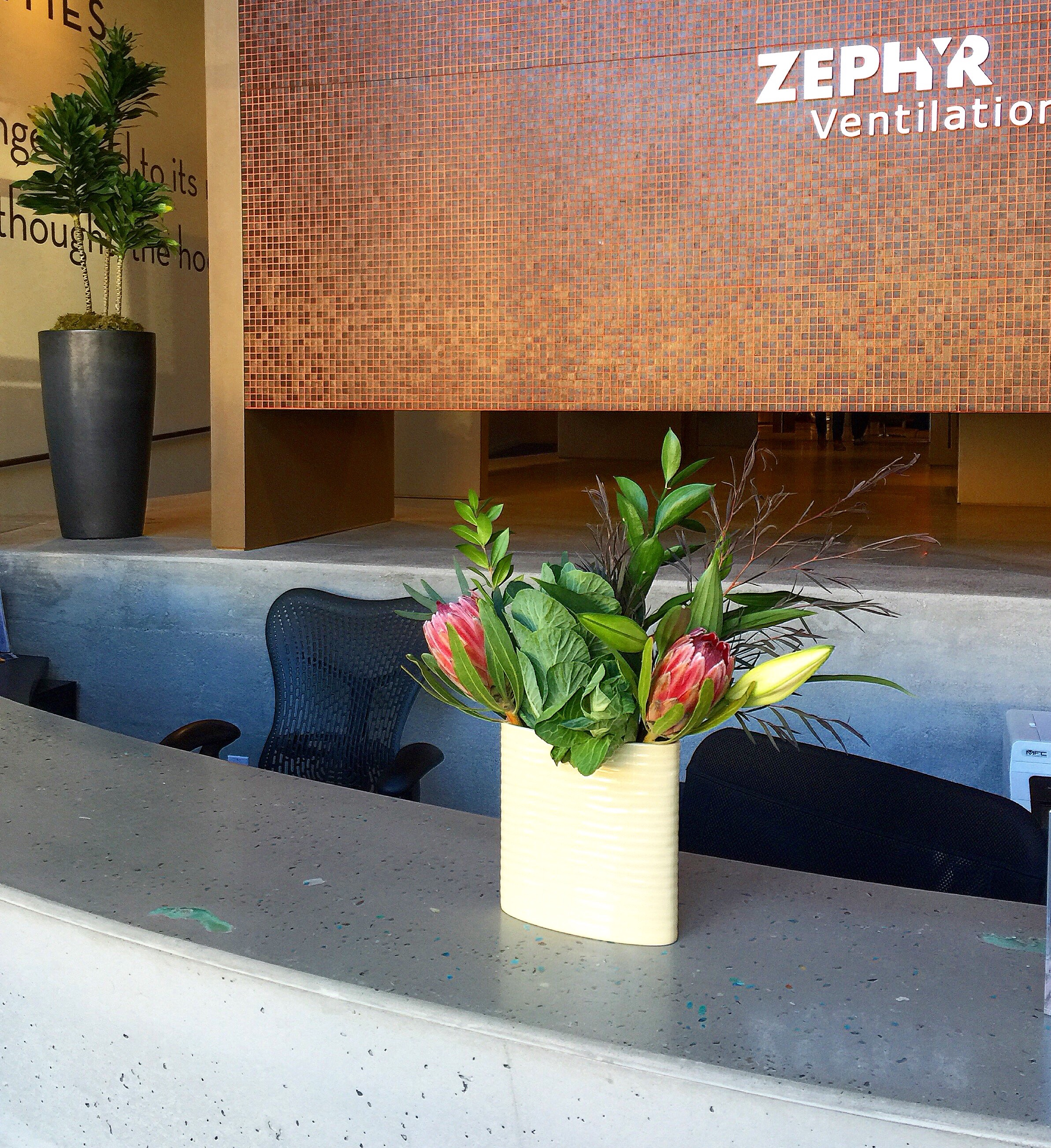concrete countertop by Fu-Tung Cheng at Zephyr showroom.jpg