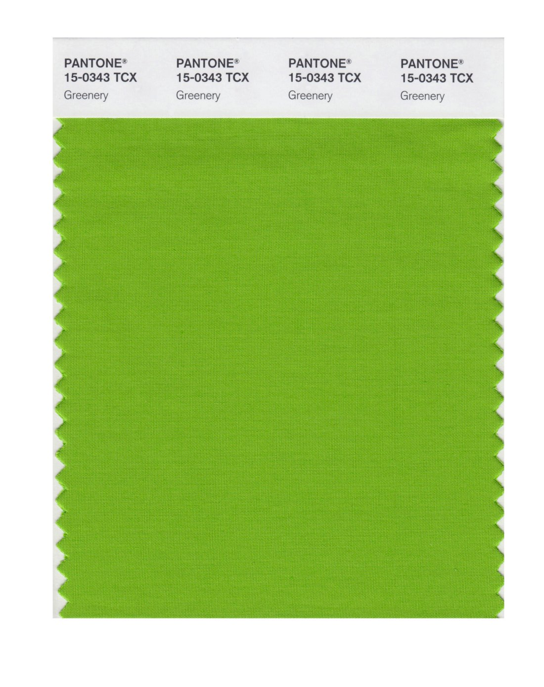 Pantone's Color of the Year 2017