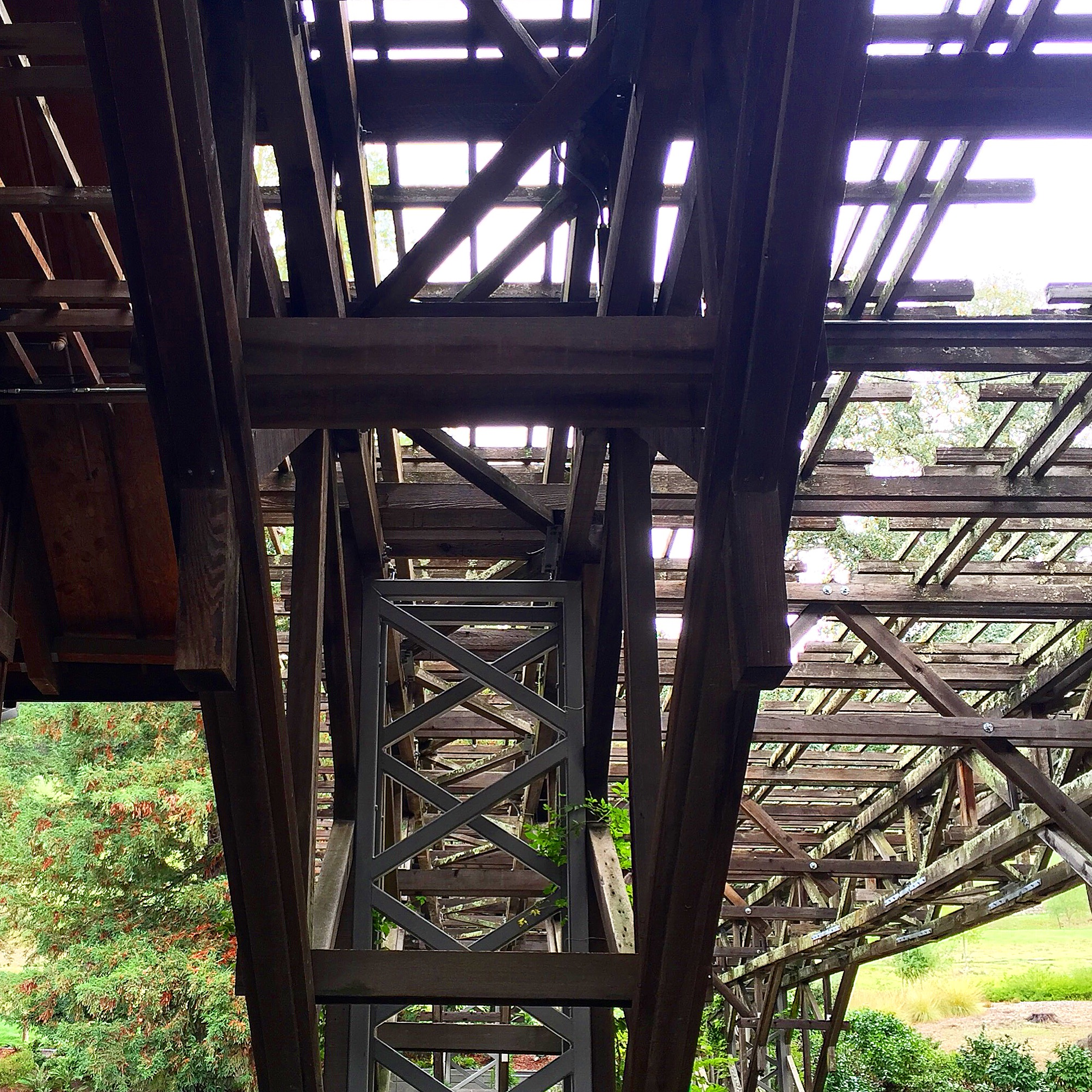 Details of the trellis from the original structure. Joseph Phelps' commitment to sustainable practices shows with their approach to the architecture represented here.