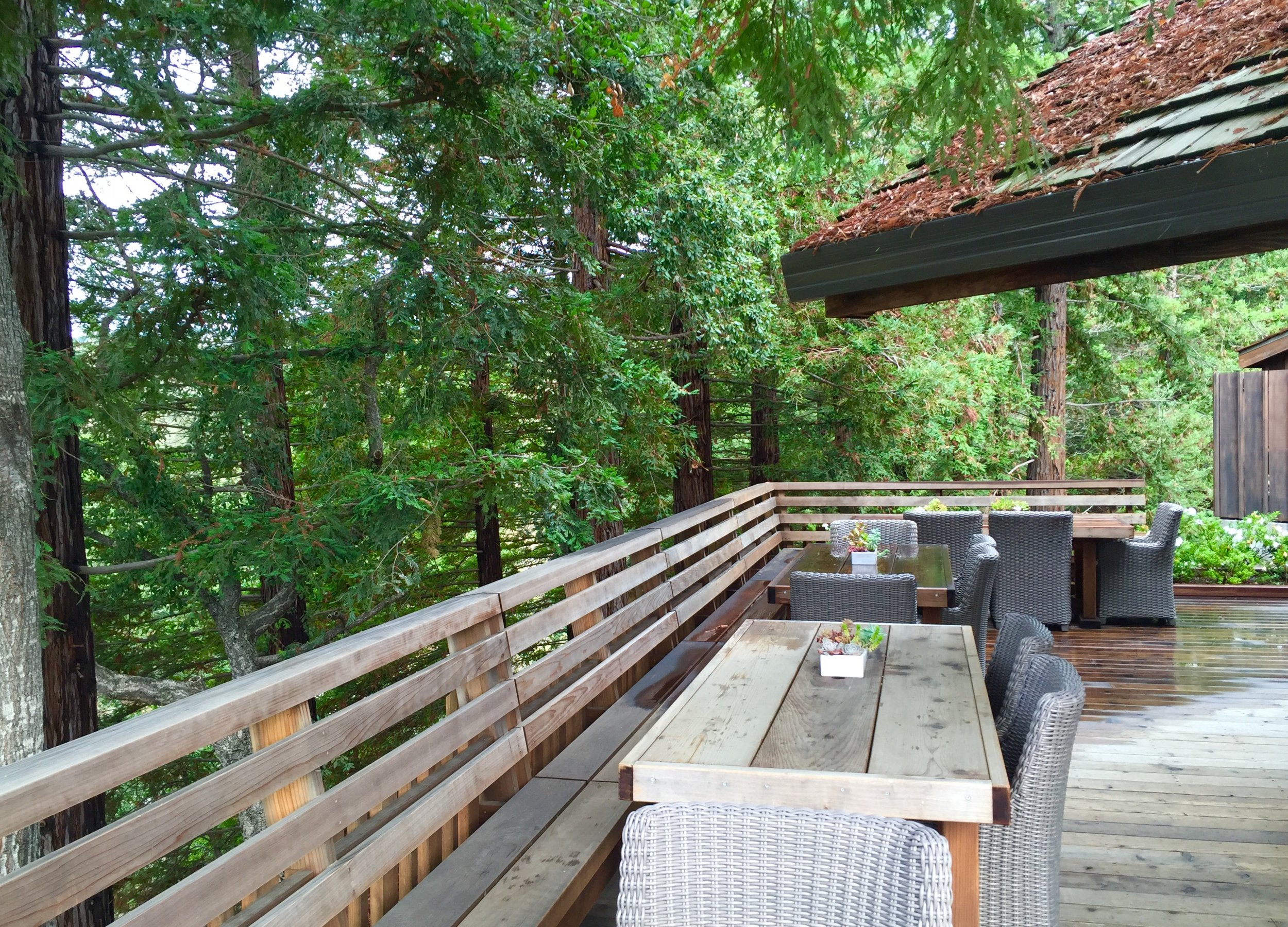 Side deck off the tasting room. It felt like you were in a tree house!