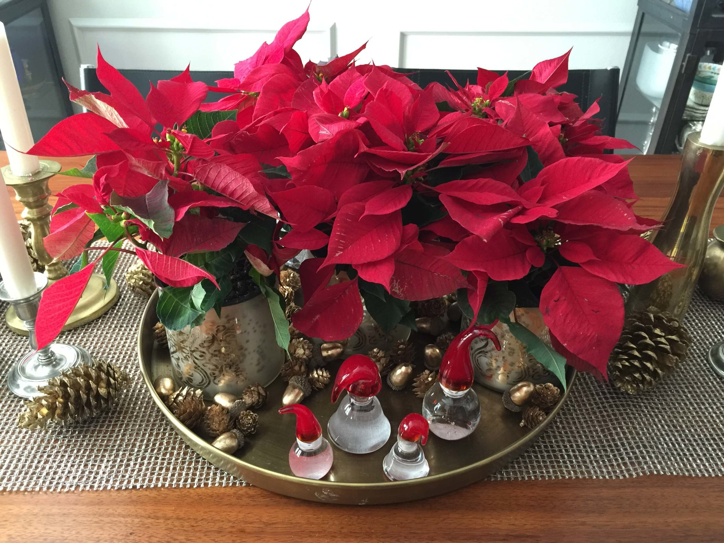 Christmas tabletop centerpiece with poinsettias
