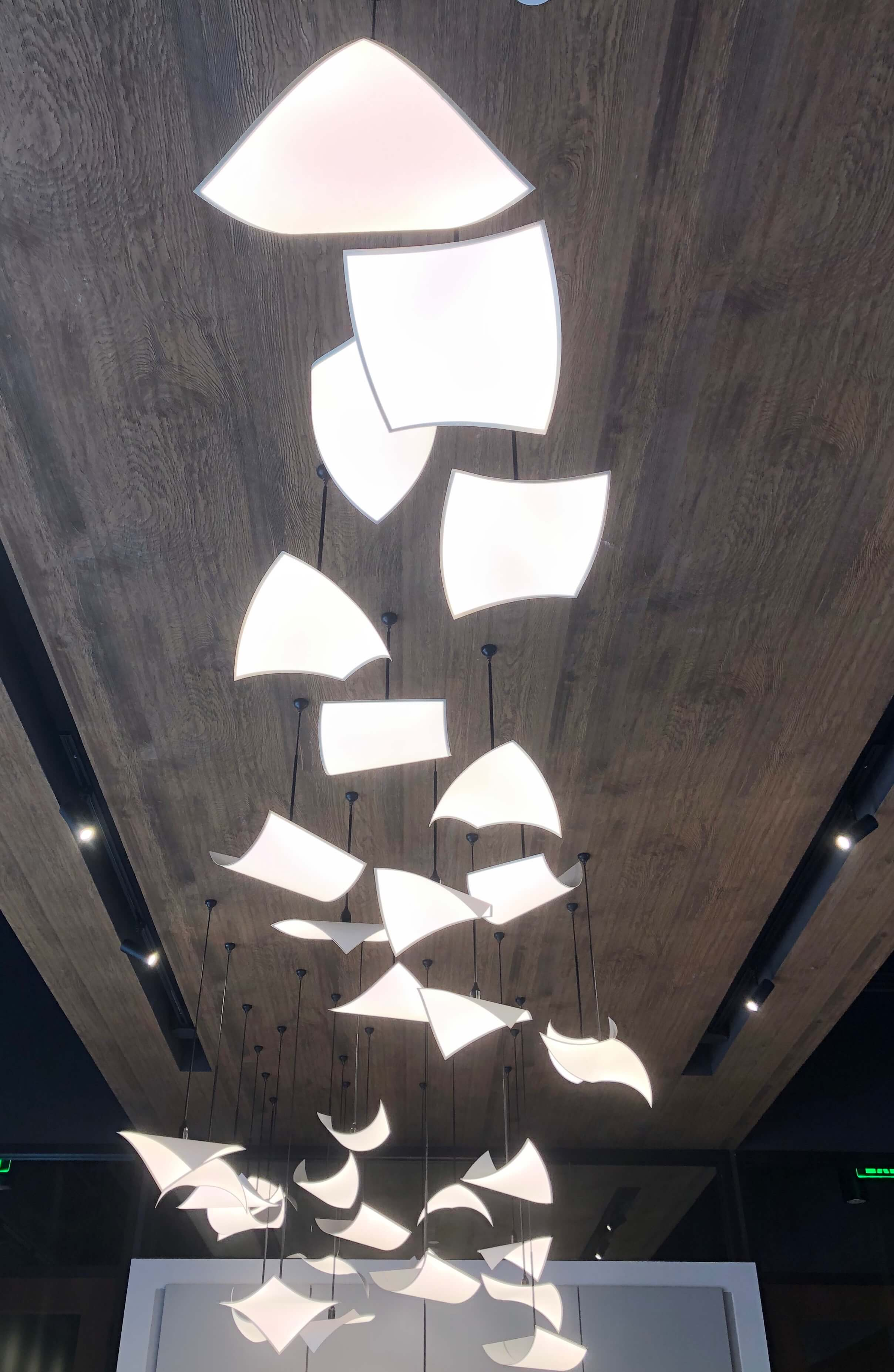 Special lighting installation - SKS Appliances Experience and Design Center, Napa