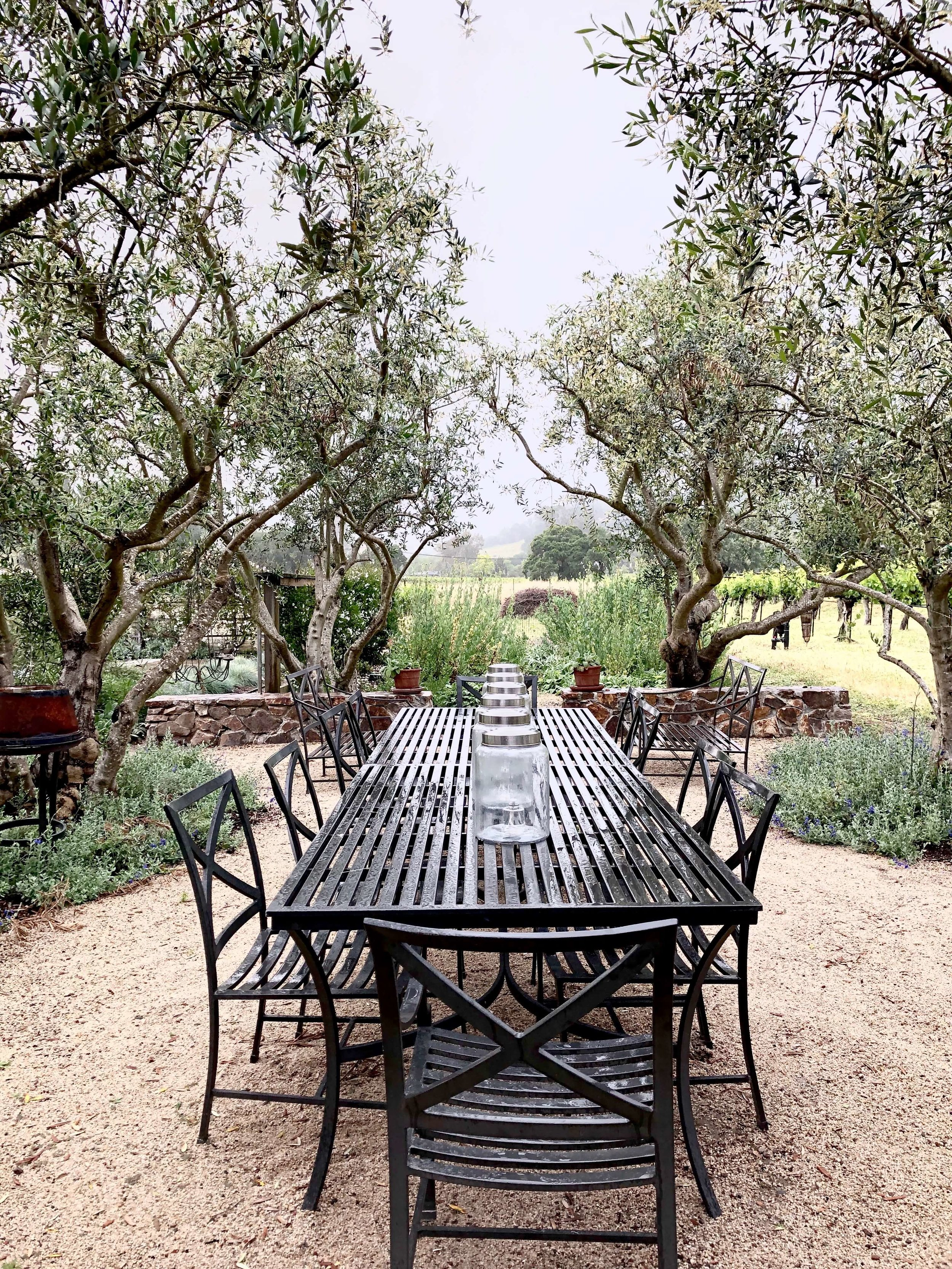 Large outdoor dining area with stone fireplace and barbecue, even a pizza oven! Sonoma Airbnb grounds and garden. #airbnb #winecountry