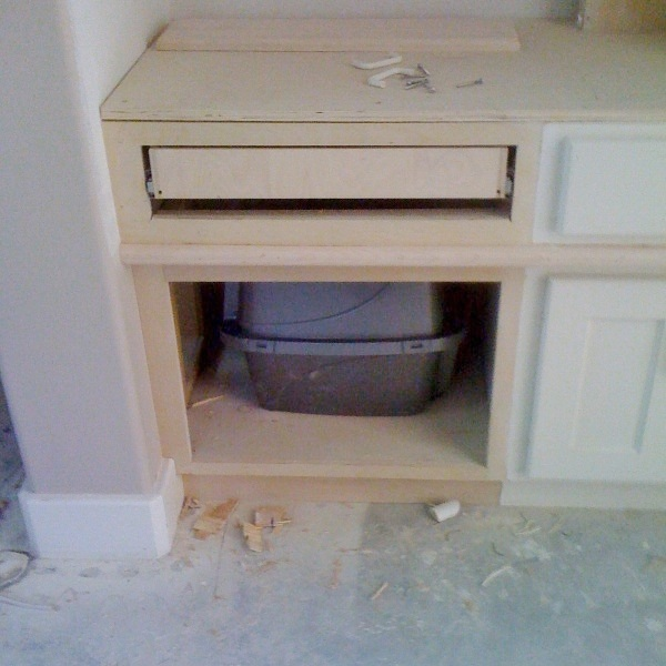 Cat box to be used in the new cabinet , with exit out the side wall. #catbox #designingforpets