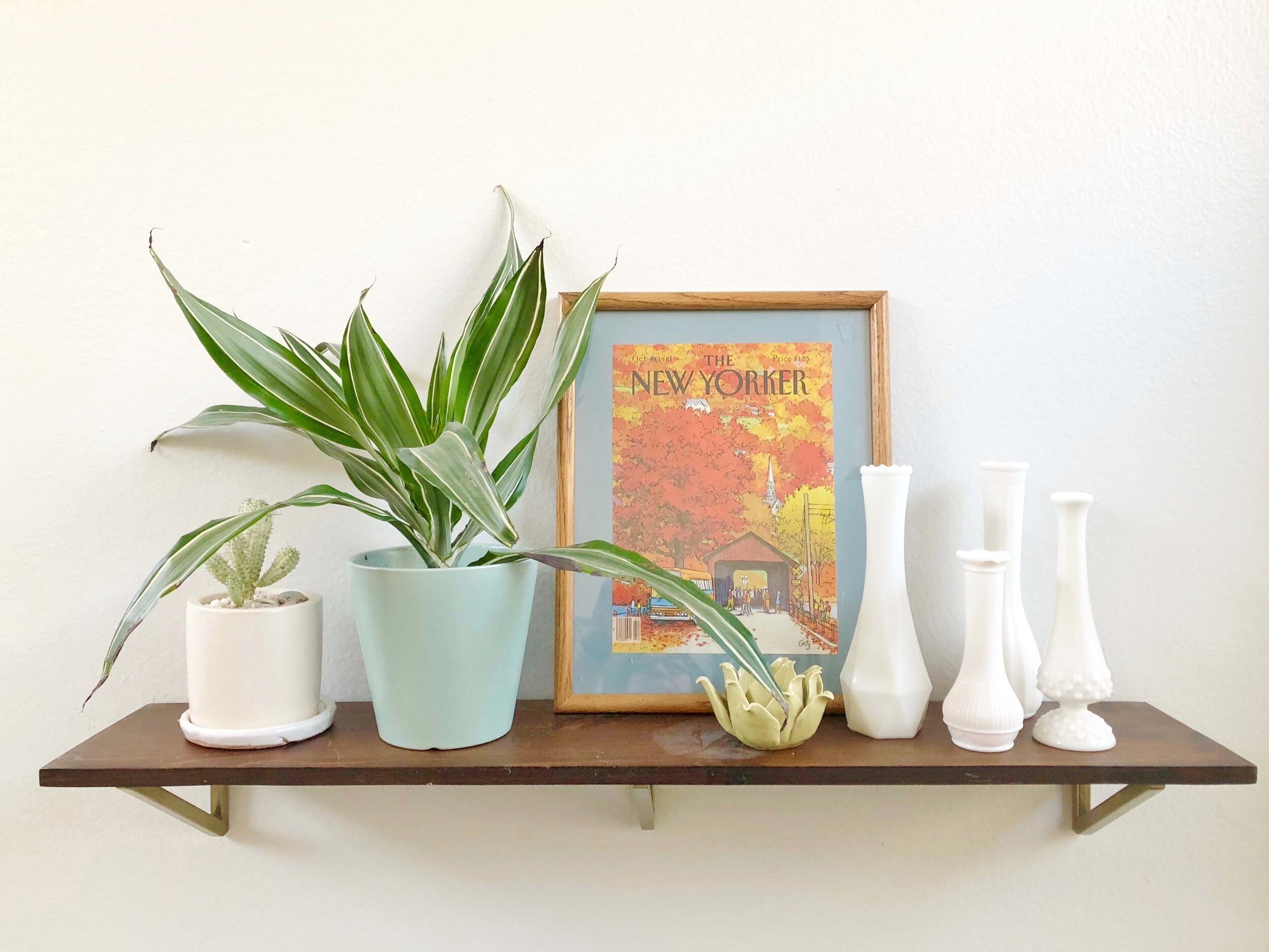 Shelf styling with a modern boho look. Lots of plants, some vintage items and a few modern, clean lined elements help pull together this style and make it easy to live with. #modernboho #shelfstyling #milkglass