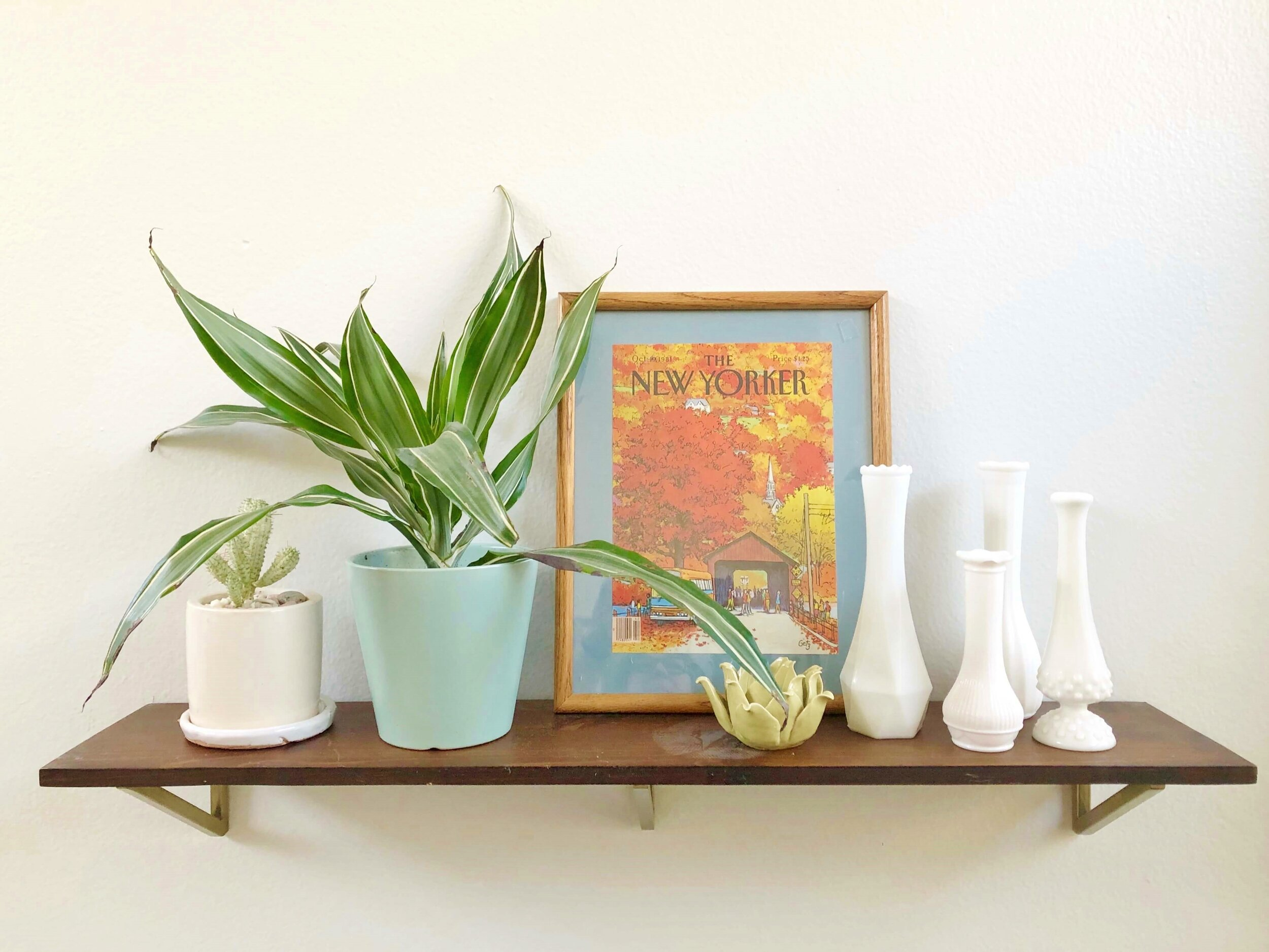 A combination of milk glass vases, plants and a vintage New Yorker cover all work together for shelf styling in a modern boho style. #modernboho #shelfstyling