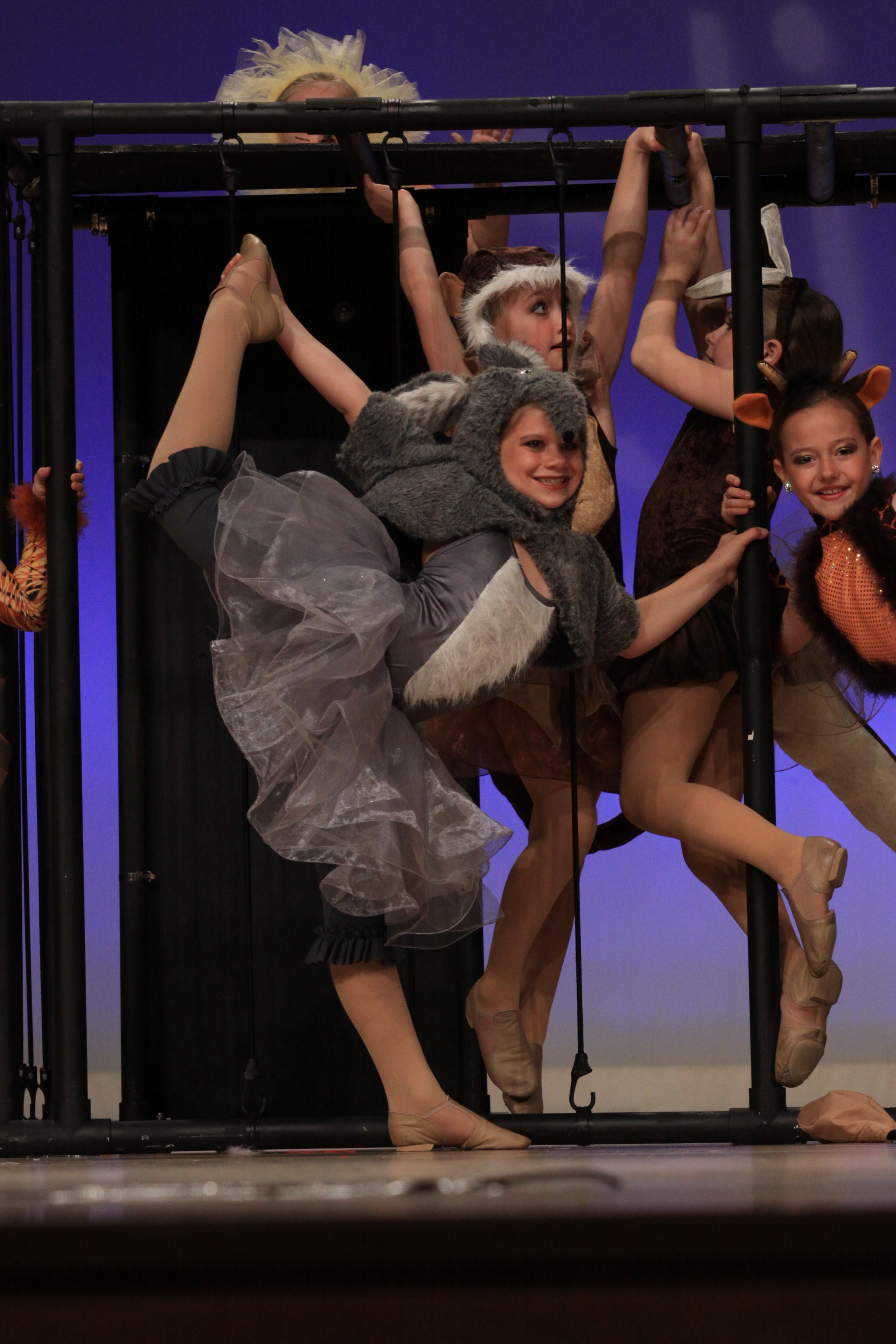"""2012 - """"What's New At The Zoo?"""" from The Dance Factory"""