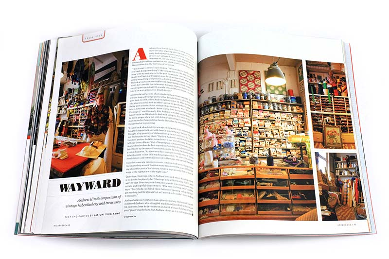 issue20-wayward-web.jpg