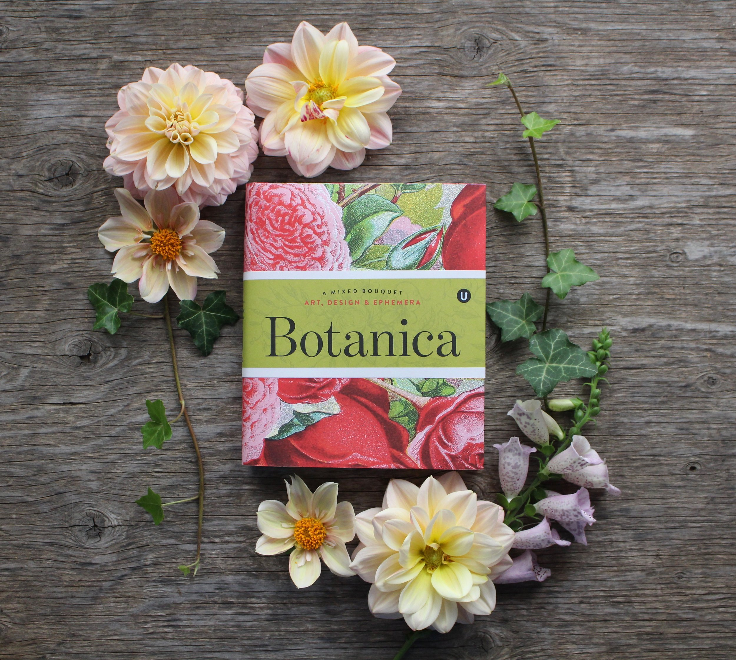 Botanica book cover photo by Antonio Valente.jpg