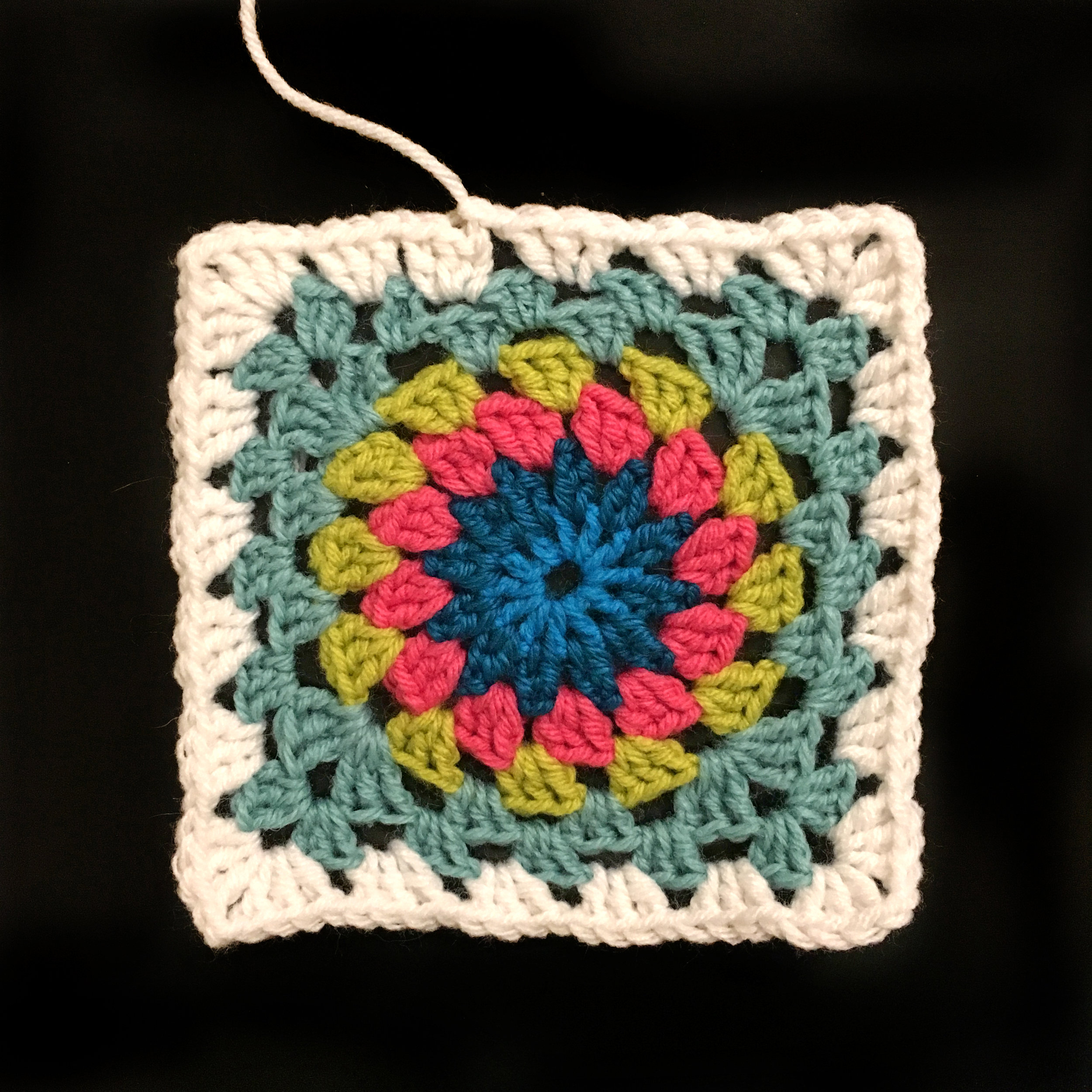 I've started the  Happy Flower  crochet project.
