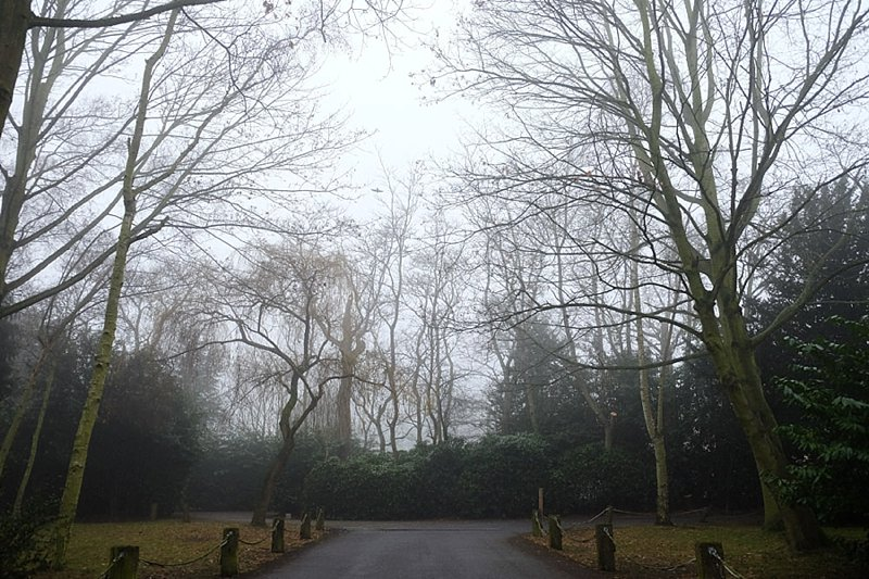 Foggy-Orsett-Hall.jpg
