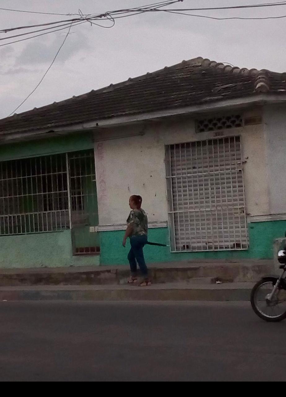 La Ceiba 4.jpg