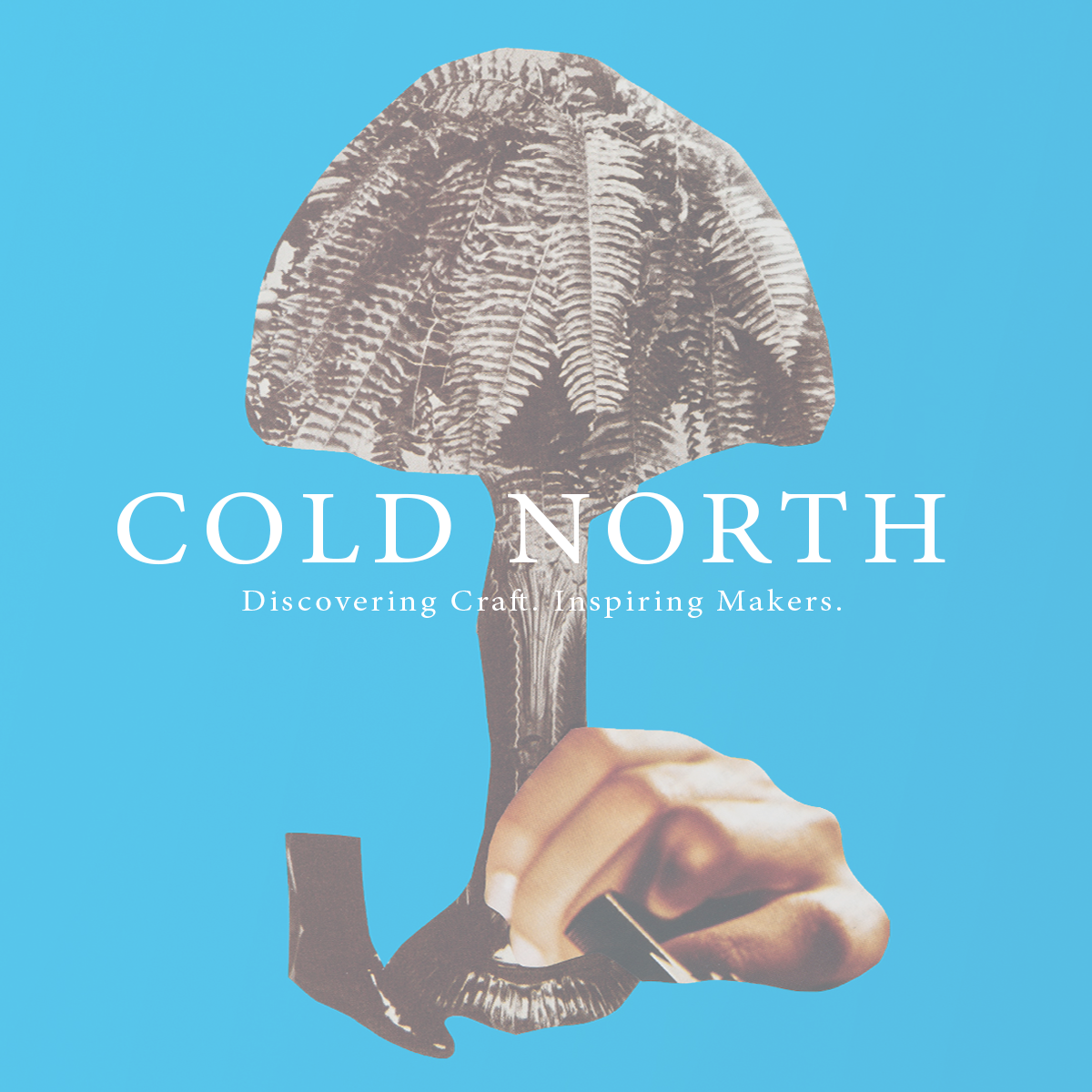 cold north test.png