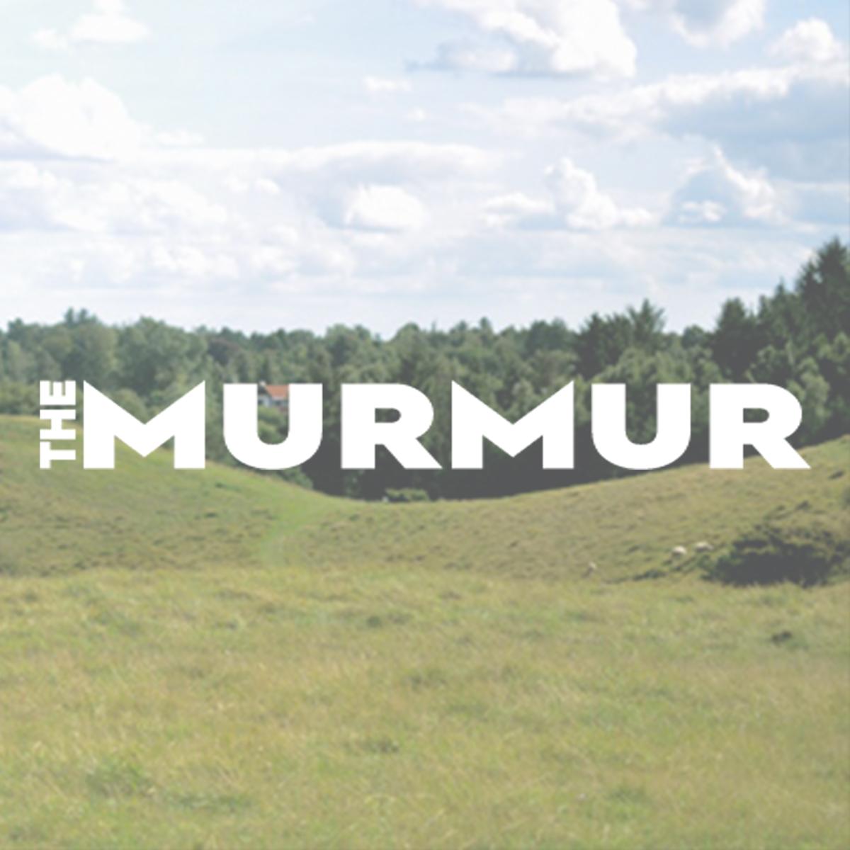 The Murmur.jpg