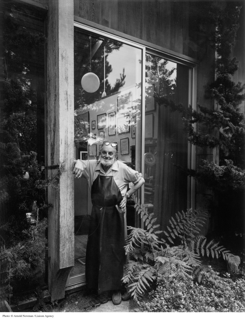 Ansel Adams by Arnold Newman.