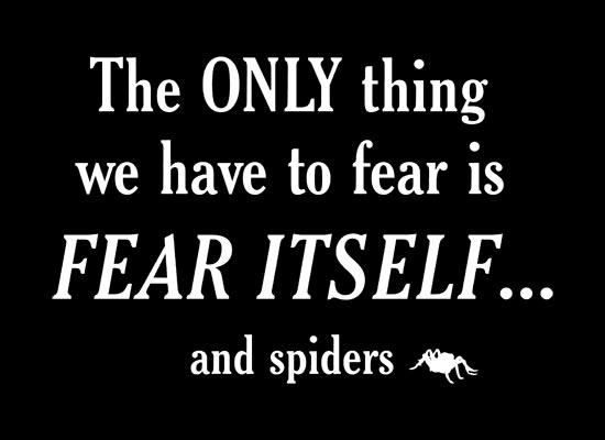 fearspiders_fullpic_artwork.jpg