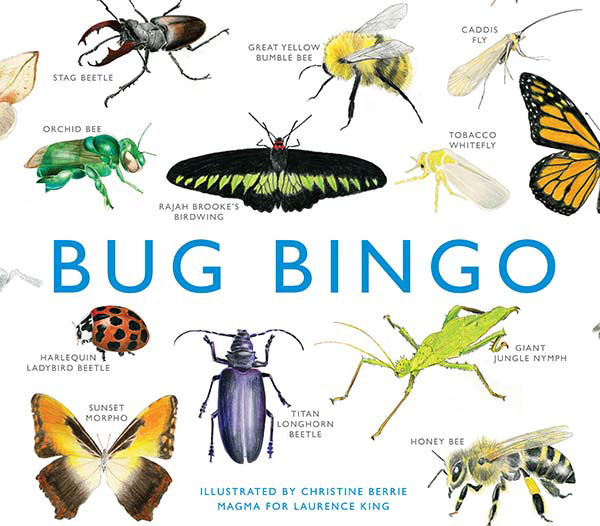 chronicle bug bingo.jpg