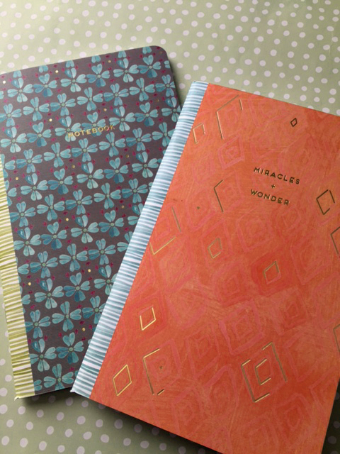 curly girl notebooks nov 16 2.jpg