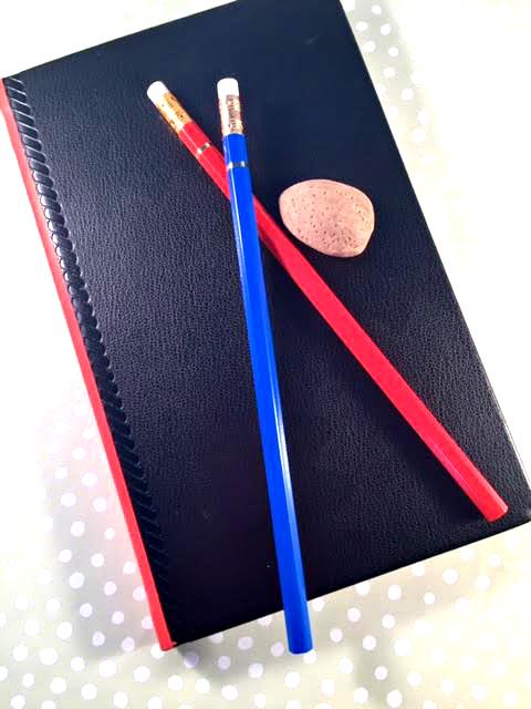 palomino journal and blue pencil.jpg