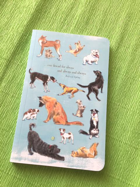 compendiuim dog journal.jpg