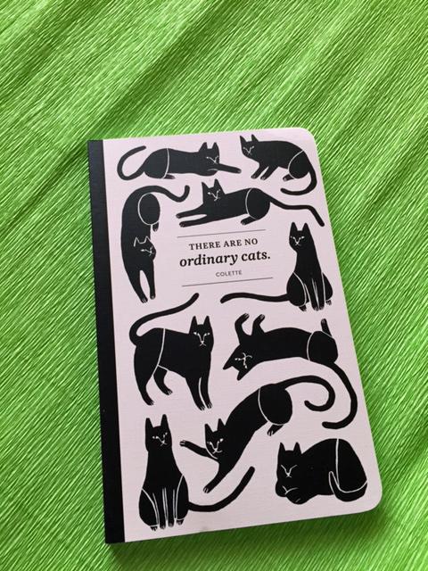 compendium cat journal.jpg
