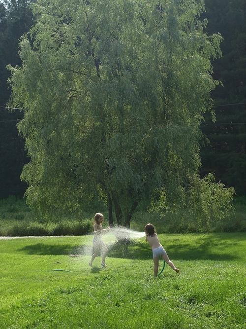 Sprinkler.jpeg
