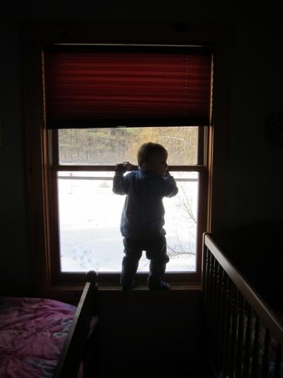 WindowWalking.jpg