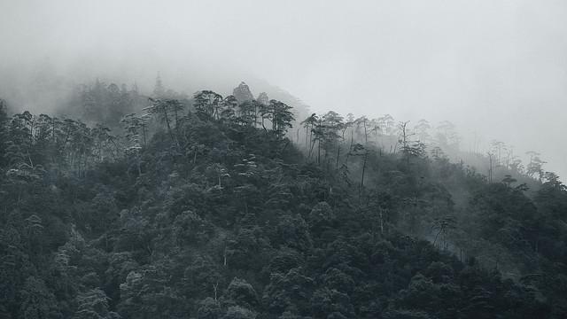 Mist on Mt. Misen   Miyajima, Japan  © Alan Wentworth