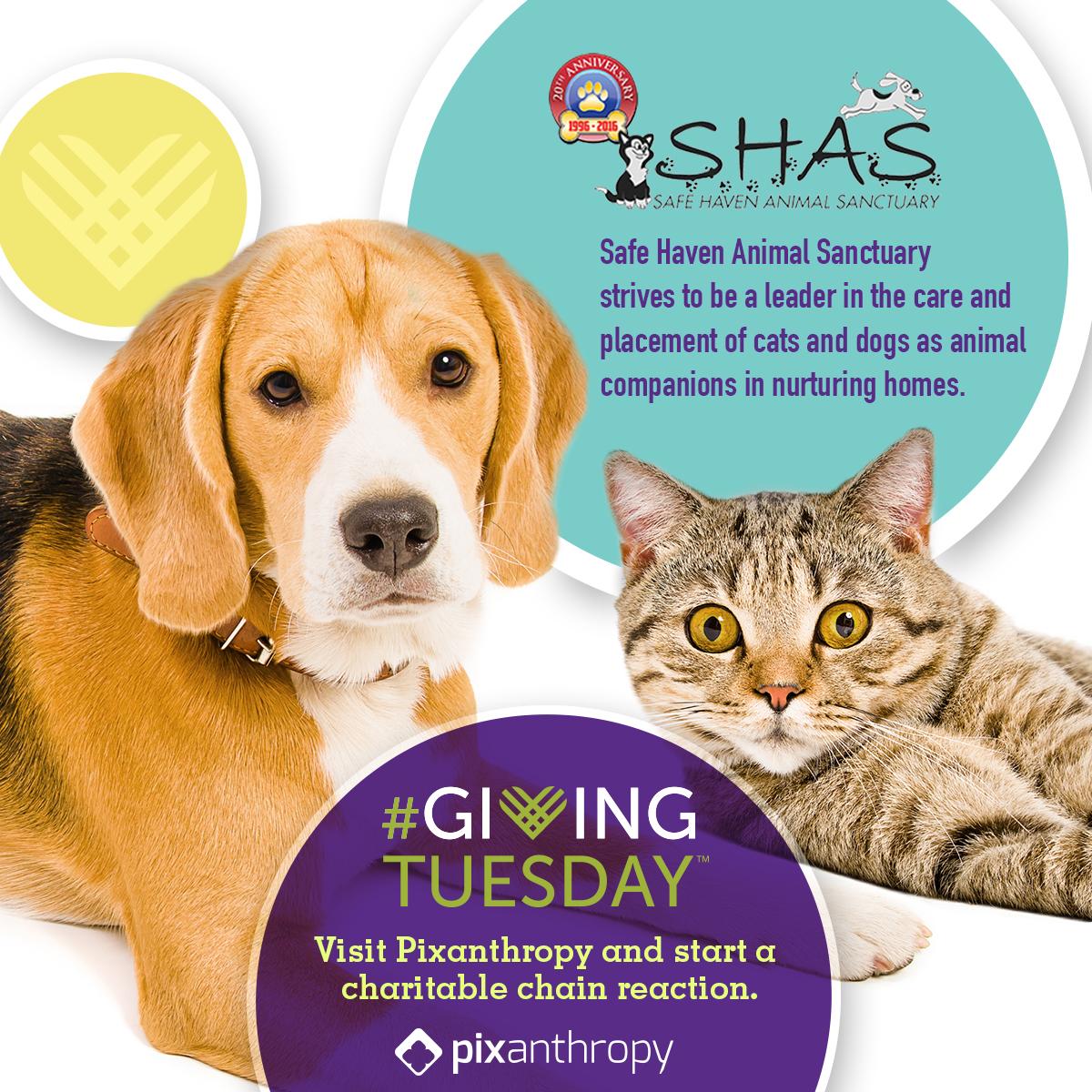 SHAS_GivingTuesday_FBPost.jpg