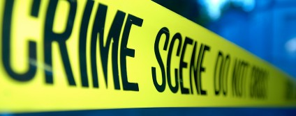 Crime Thriller Fella Review