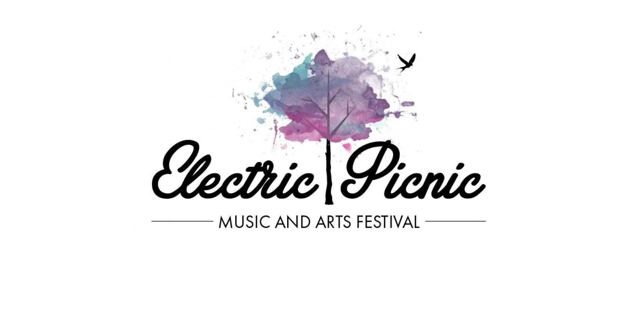 electric picnic.jpg