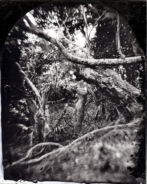tintype 5.jpg