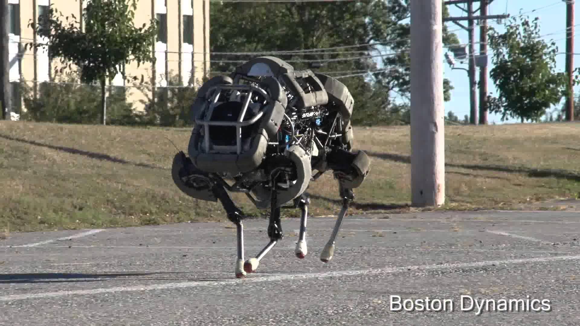 boston dynamics wildcat robot.jpg