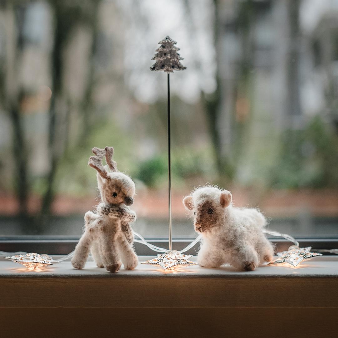 Good creatures on the windowsill, December 25th, 2018.