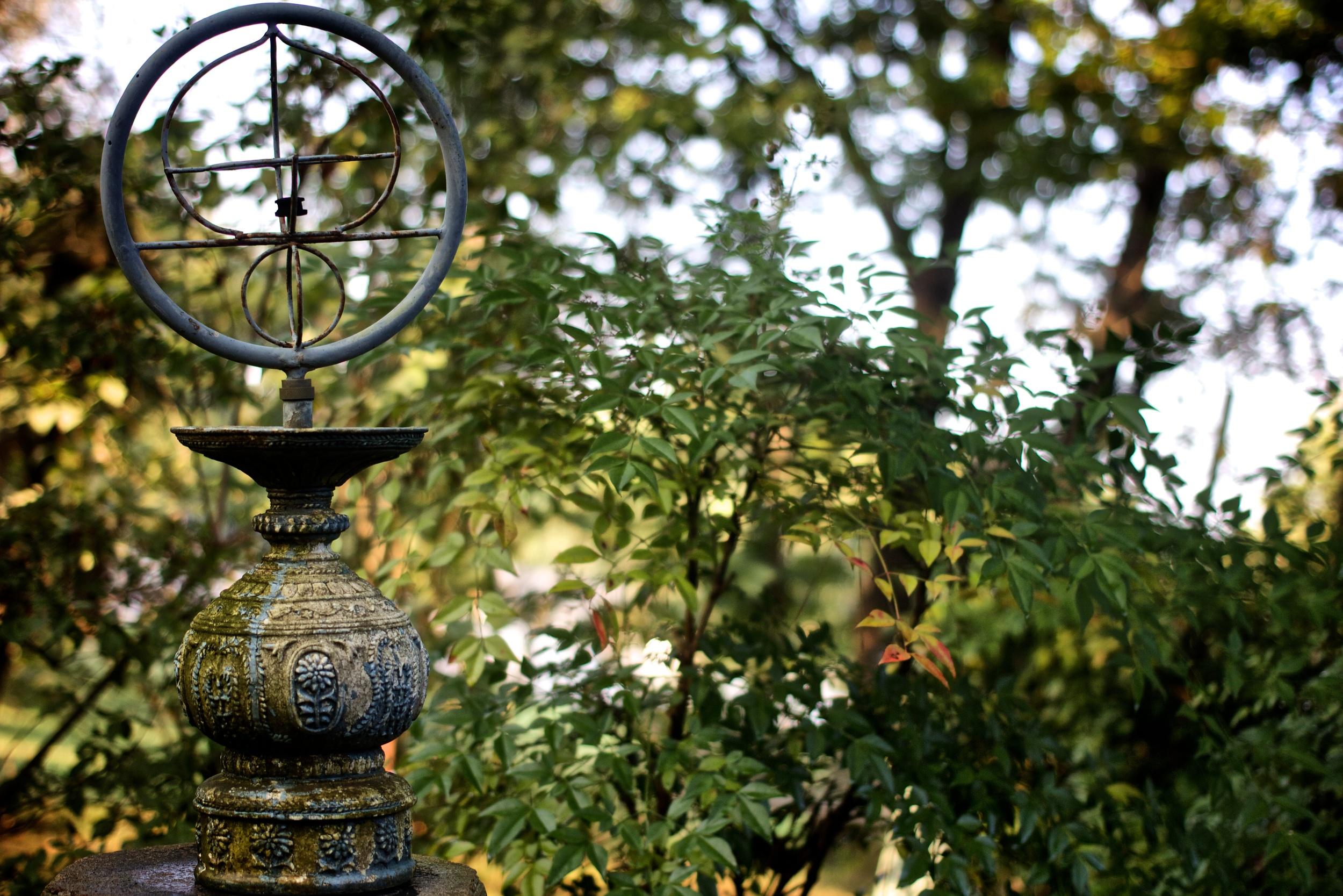 The Photography Garden