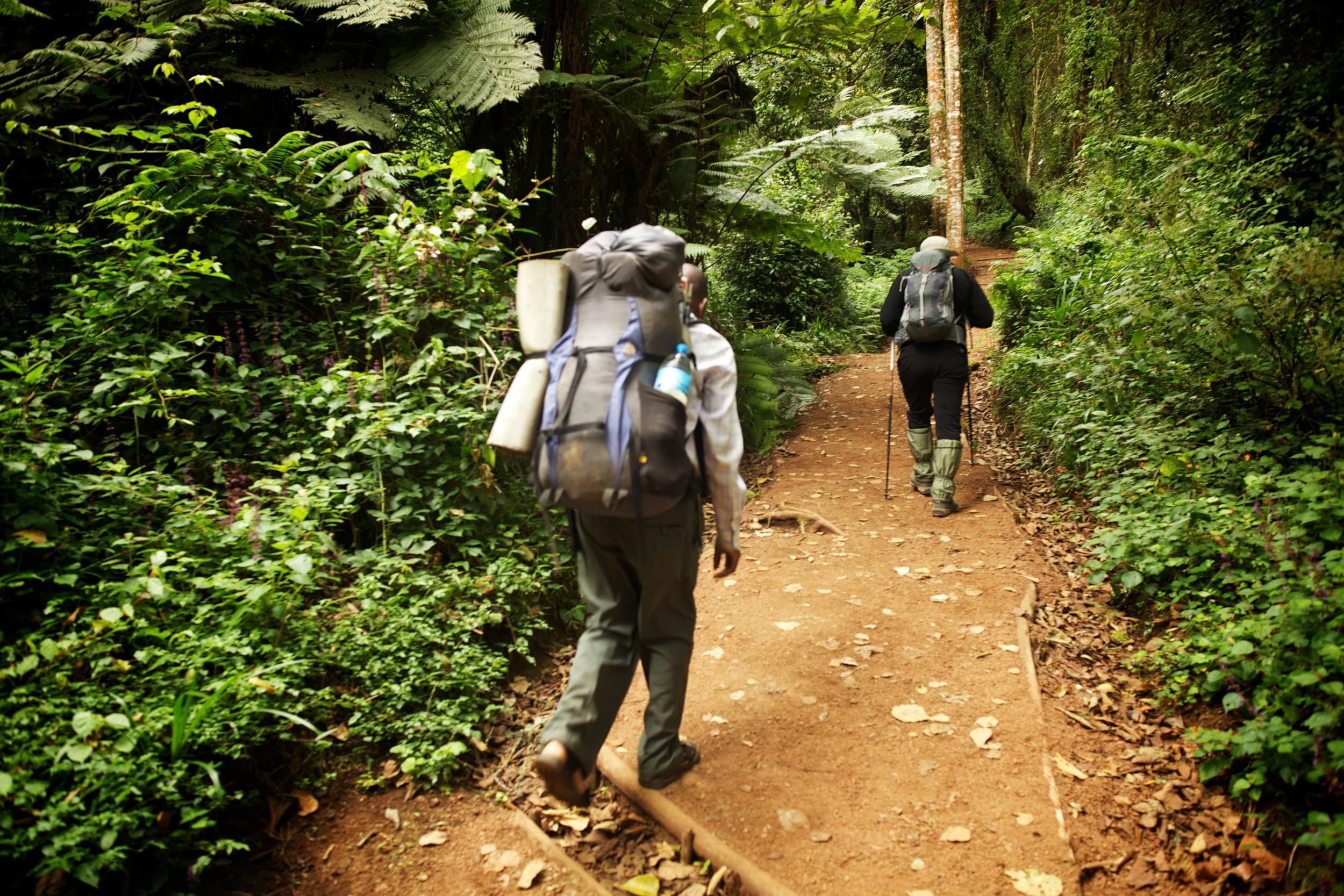 Machame Route, Kilimanjaro (TZ) Sep 2012
