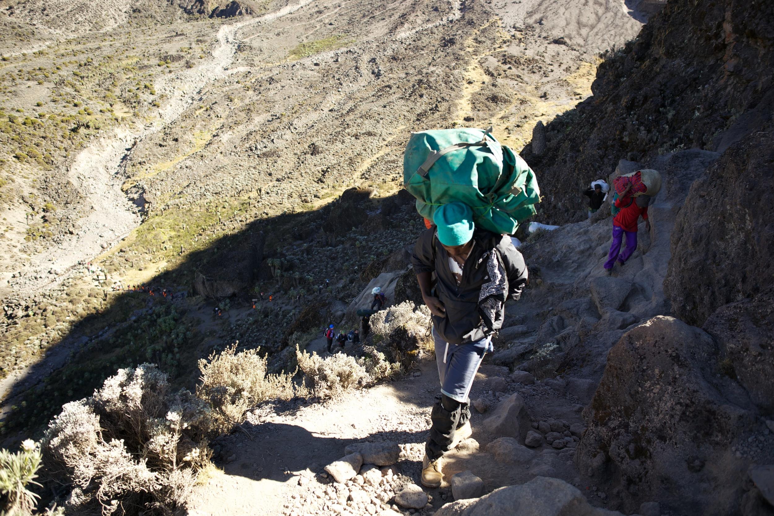 Whisky Road, Mt. Kilimanjaro (TZ)