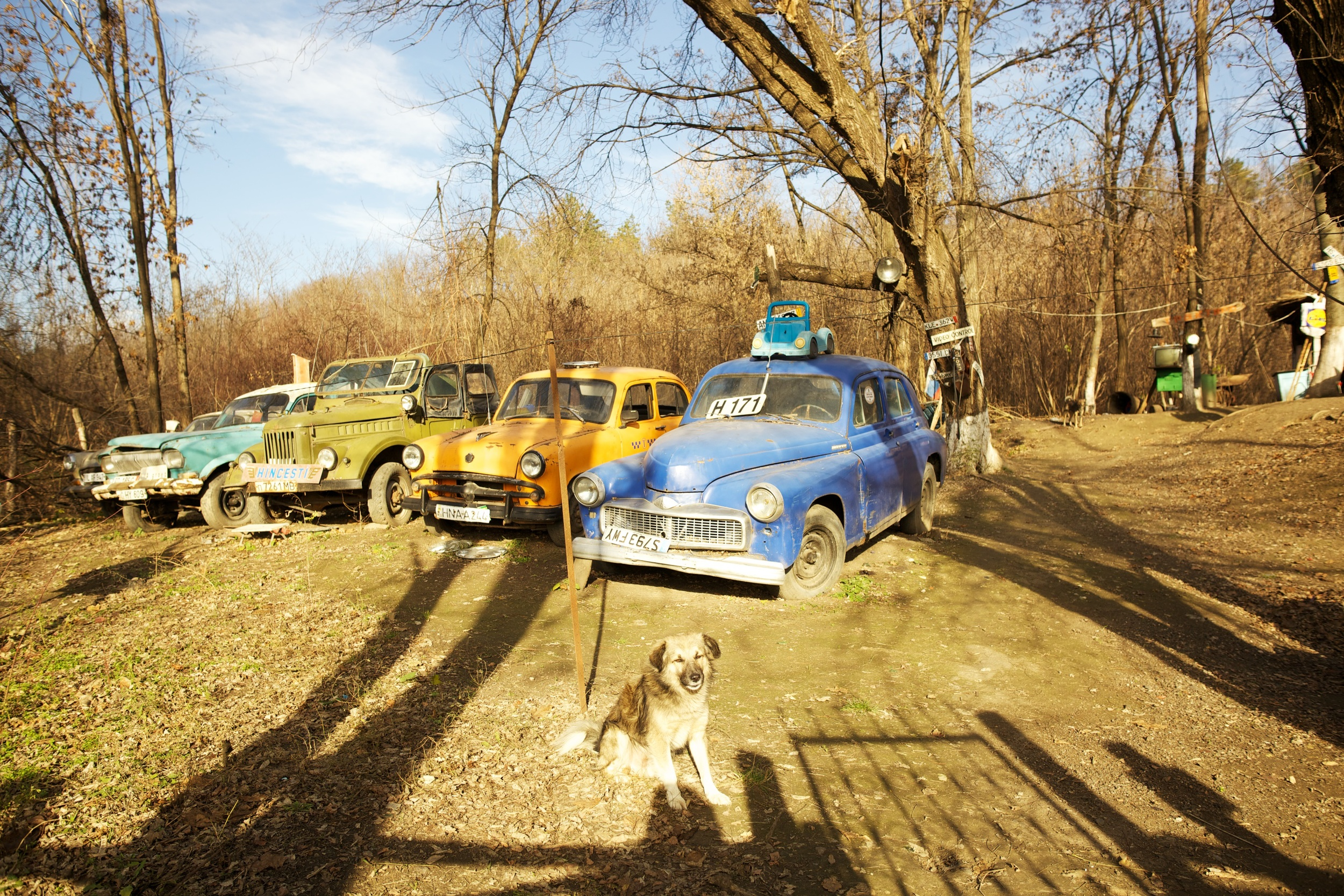 Ex sovjet car exhibition in the woods