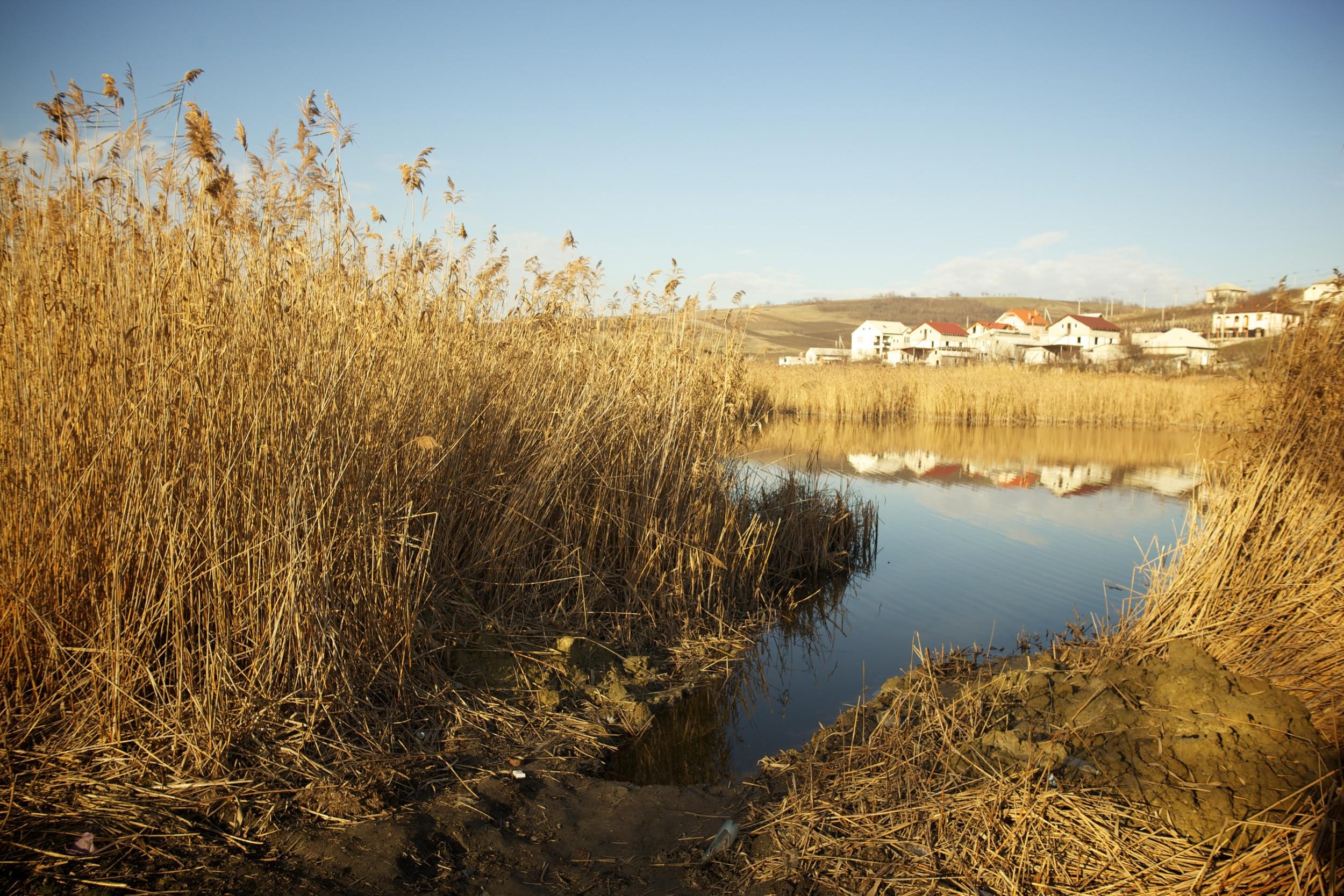 XYZ village