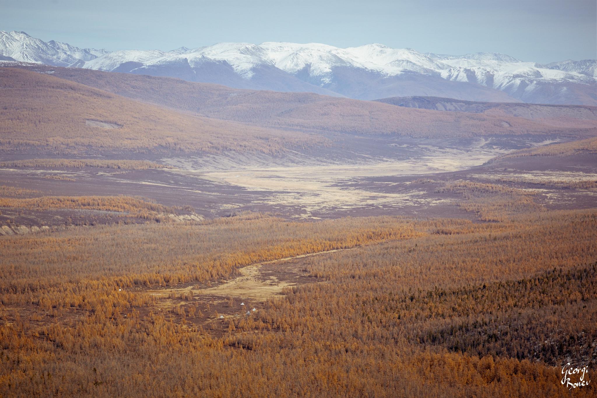 SAYAN MOUNTAIN AND THE TSAATAN CAMP IN THE TAIGA, MONGOLIA