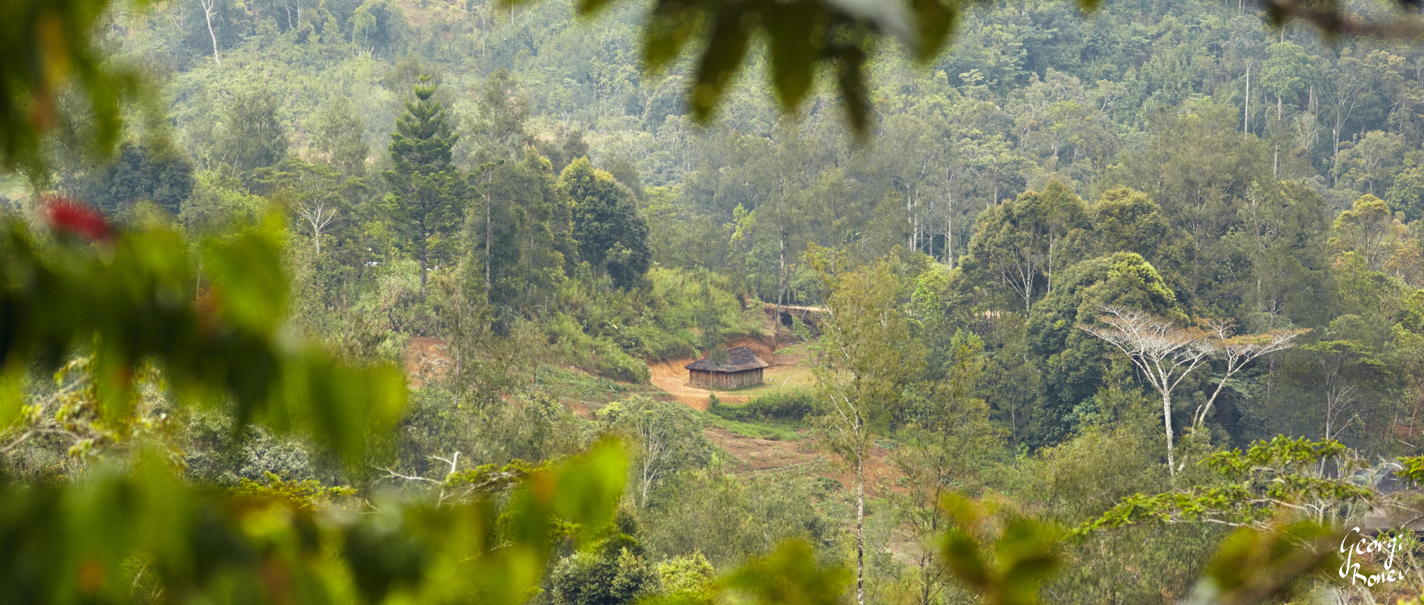 DIWAI VILLAGE IS LOCATED IN THE JUNGLE OF PAPUA NEW GUINEA
