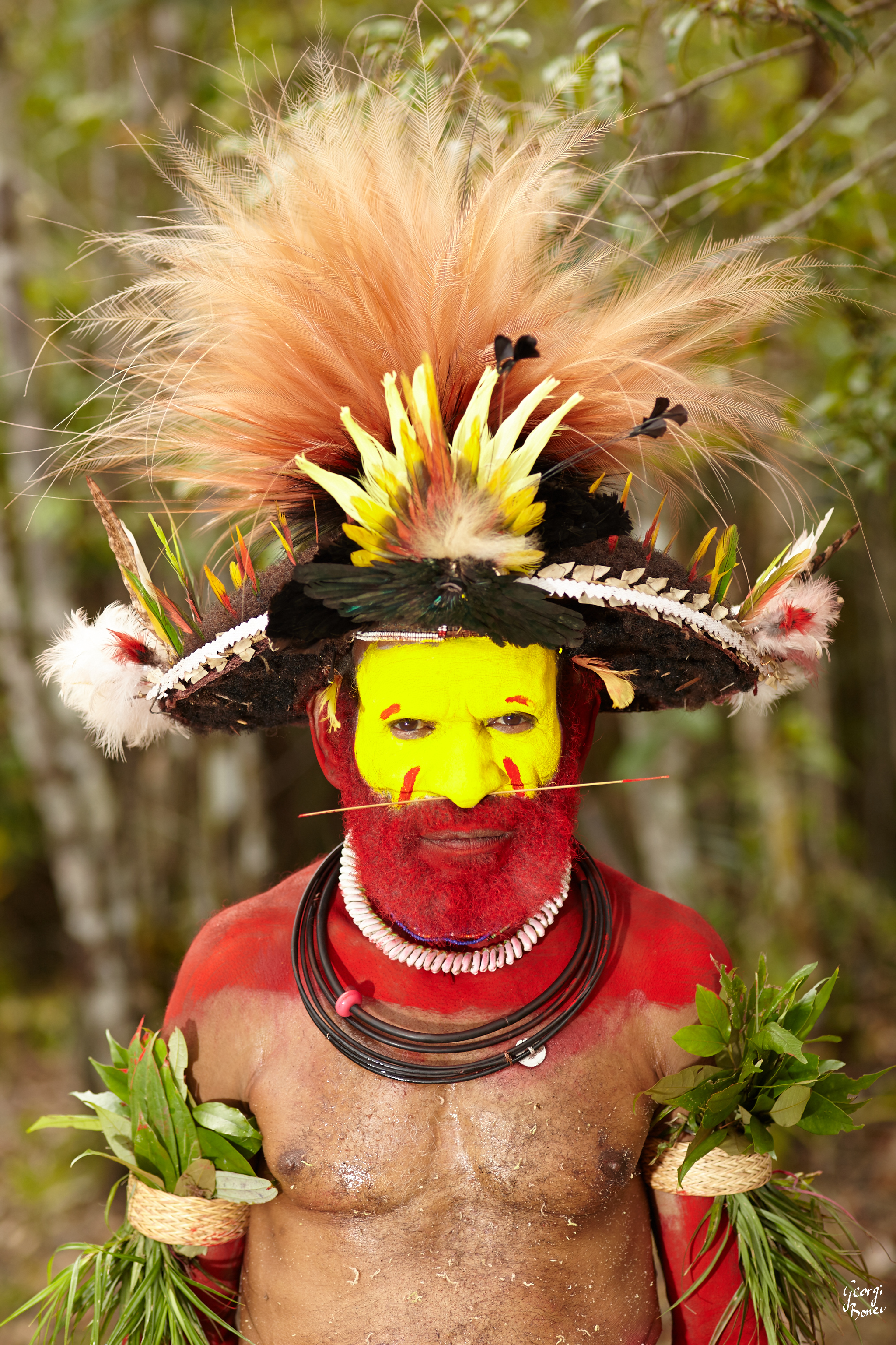 STAGE 2 WIG OF HETAPE, PAPUA NEW GUINEA