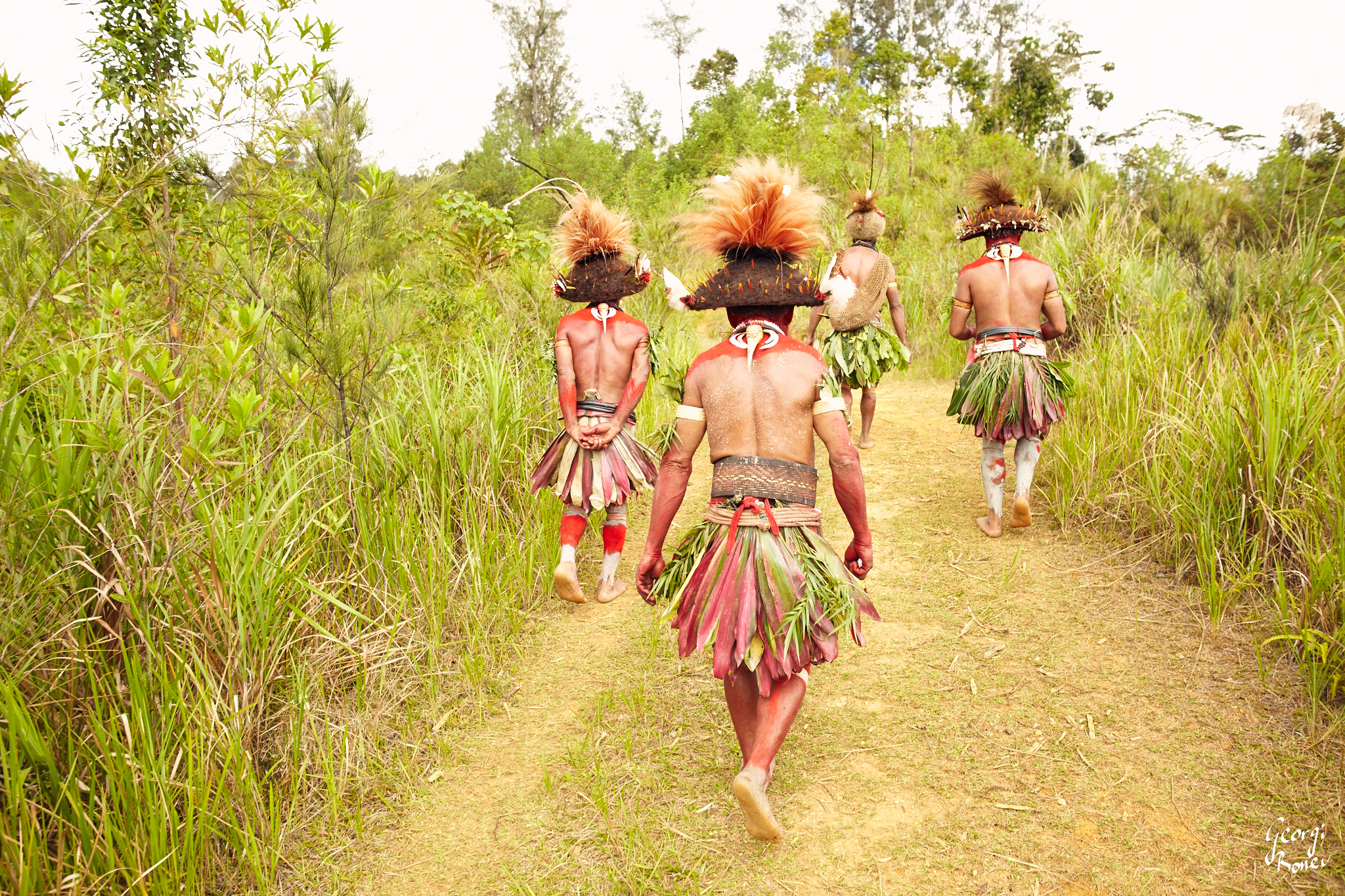 "ON THE WAY TO ""SING-SING"" CEREMONY, HULI WIGMEN, PAPUA NEW GUINEA"